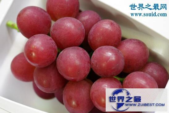 【图】世界上最贵的水果,美国草莓阿诺140万美元一碗