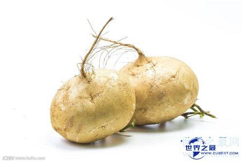 【图】凉薯功效和作用及禁忌 凉薯营养价值介绍
