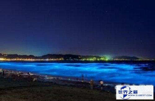 【图】浪漫游览的极佳之地大连荧光海滩