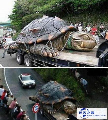 【图】世界上最大的动物长80米,清点20个巨型恐惧动物