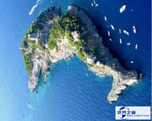 5.意大利海豚岛