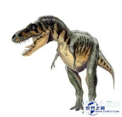 【图】史上最强的肉食类恐龙:特暴龙