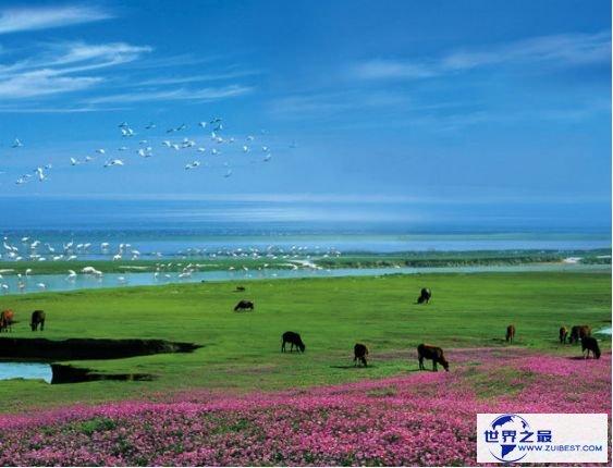 1.鄱阳湖