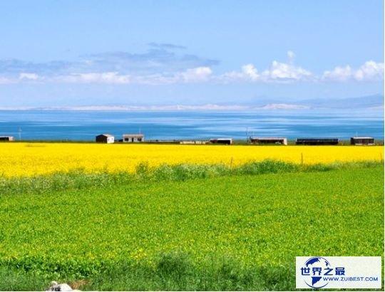 2.中国最大的淡水湖:青海湖