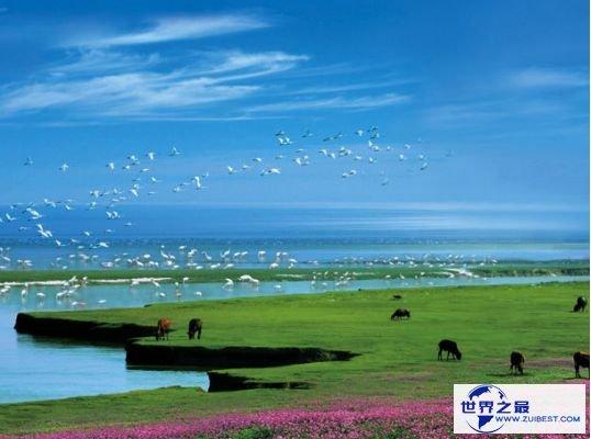 1.中国最大的咸水湖:鄱阳湖
