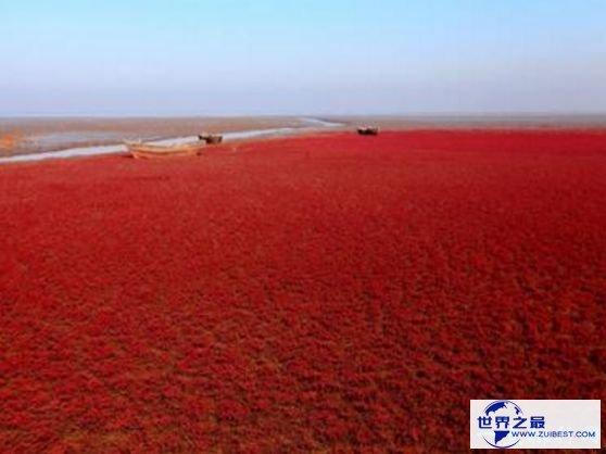 世界上温度最高的海 红海水温可达32度