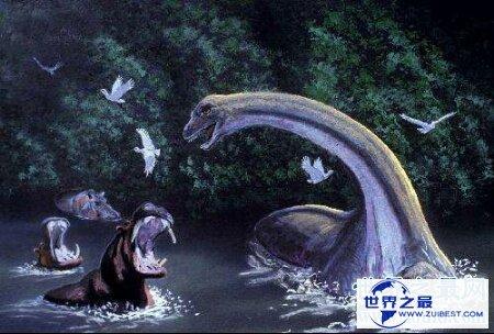 【图】生存在非洲刚果沼泽深处的刚果恐龙切实存在吗