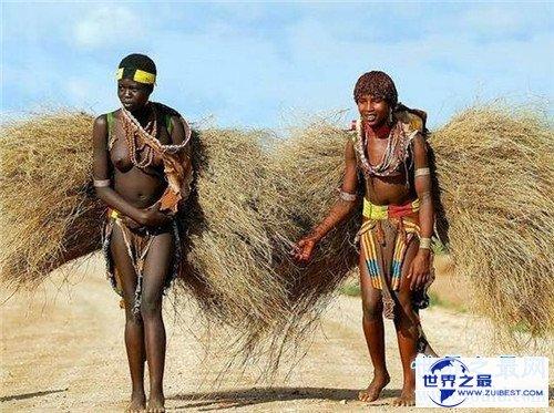【图】象人族崇尚一夫多妻制 因部族男人生殖器官细小