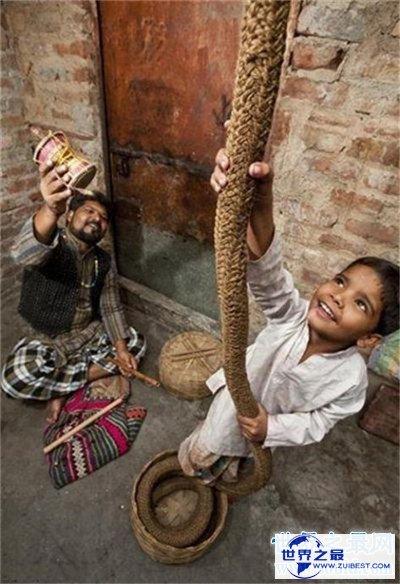 【图】通天绳为玛雅人的作品 听说里边加了这样货色