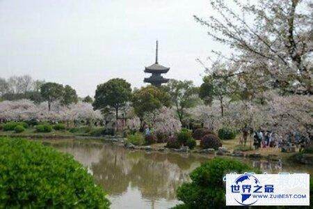 【图】中国最美的大学里的风景真实是太美了 美到令人