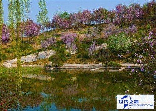 【图】石家庄植物园门票是多少 石家庄植物园开放工夫