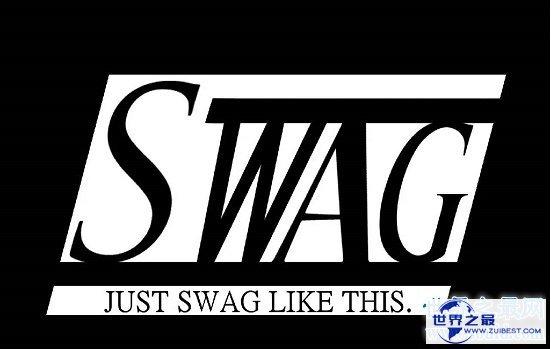 【图】swag是什么意思,不用管它帅就完事了