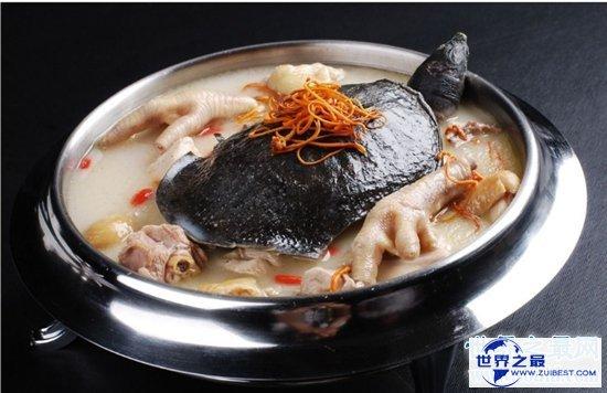 【图】甲鱼的做法大全 清炖红烧闷煮都难不倒你
