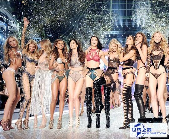 【图】世界十大文胸品牌,优雅美丽的超模之维密(维密