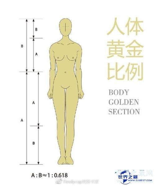 【图】身体比例影响到你的颜值 如何测量本人的身体是
