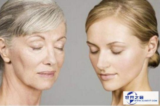 人体最大的器官是什么 感知所有的器官——皮肤
