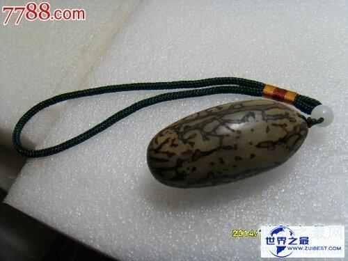 【图】千眼菩提是一种有名的果子,你还当它是石头吗