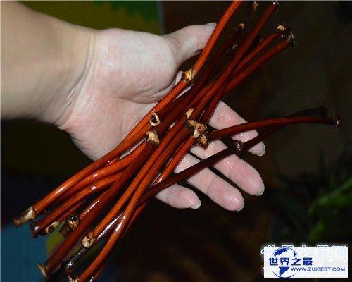 【图】功能最多的植物——鸡血藤