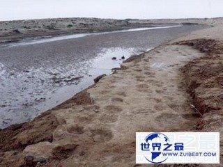 【图】世界上最长的恐龙足迹